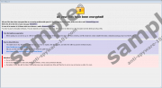 .bip File Extension